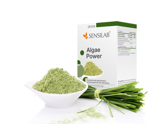 Algae Power 2+1