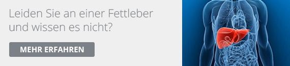 fettleber